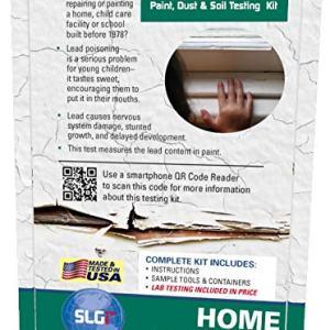 Lead Test Kit in Paint, Dust, or Soil 1PK Schneider Labs