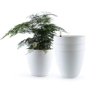 T4U 13.75 Inch Plastic Self Watering Planter with Water Level Indicator White Set