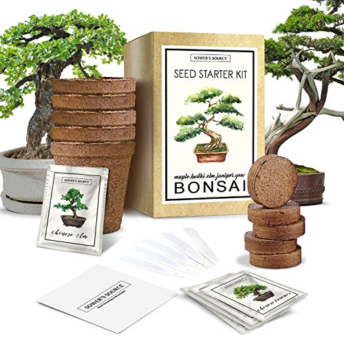 Bonsai Tree Starter Kit - Indoor and Outdoor Beginner Seed Kit, Soil Mix, Biodegradable Planter Pots, Plant Markers, Growing Guide - Grows 5 Unique Trees