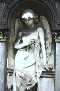Mezzano Angel