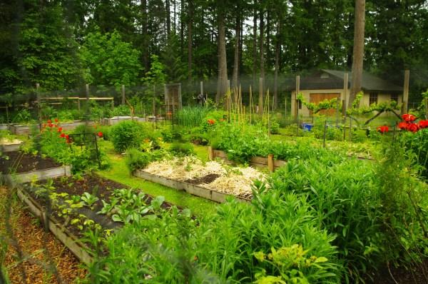 cowichan vally 2010 garden tour