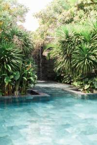 33 Tropical Swimming Pool Designs for Those Who Daydream