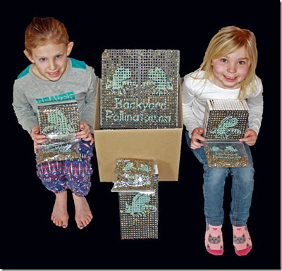 Kids With Leafcutter Bee Kit