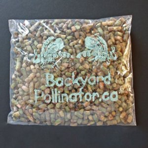 Loose cocoons 75g from Backyard Pollinator