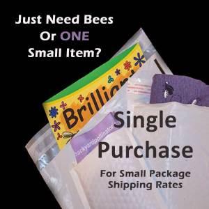 Single Orders