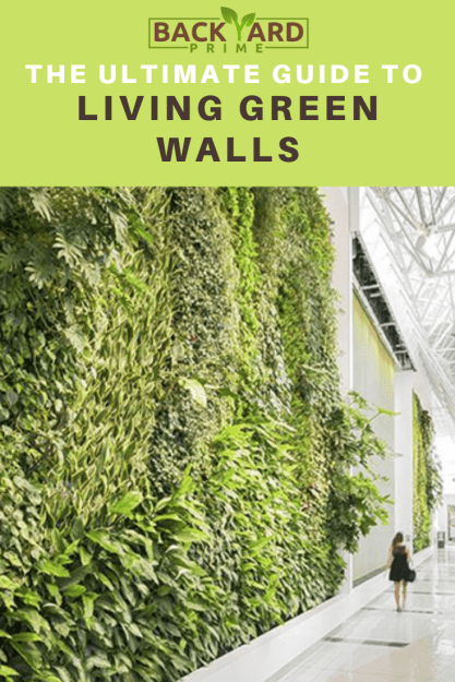 All That You Need to Know About the Living Walls Planters and Vertical Gardening? 5