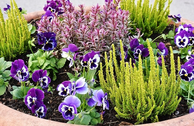 Tips & Ideas to Edging a Flower Bed to Brighten Your Backyard 1