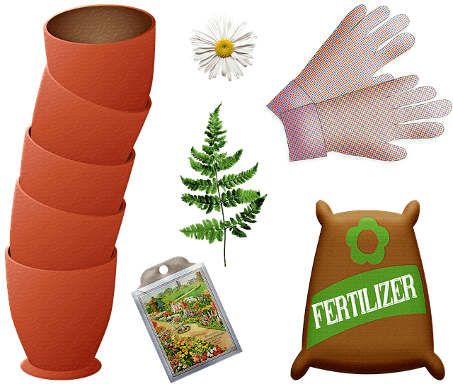 All You Need to Know about Organic Lawn Fertilizer 2