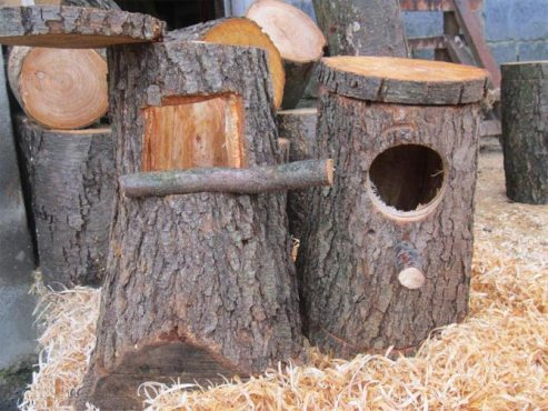 dird feeder and house made of tree stump