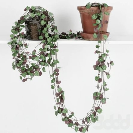 Rosary Plant decoration idea