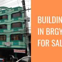 Building in Brgy. 29 For Sale