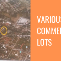 Various Commercial Lots in Bacolod