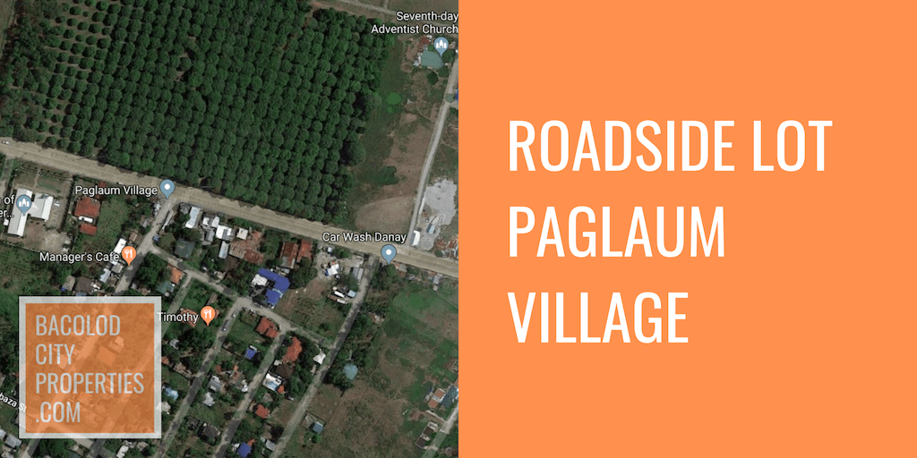 Roadside Residential Lot in Paglaum Village Going to Murcia.png