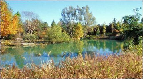 Photo credit: Lewis Ginter Botanical Garden
