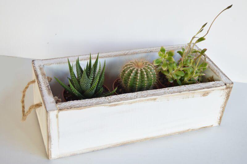 cajon rustico con plantas