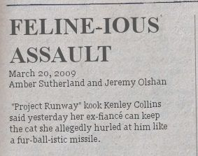 felineious-assault