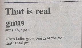 real-gnus