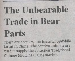 """The Unbearable Trade in Bear Parts"""