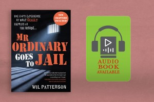 Mr Ordinary Goes to Jail Audio Book