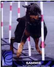 Sammie2006DecInvitational