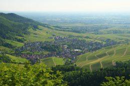 YBurg_Baden-Baden-Varnhalt_DSC04376
