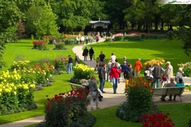 DSC09718_Baden-Baden Dahliengarten 007