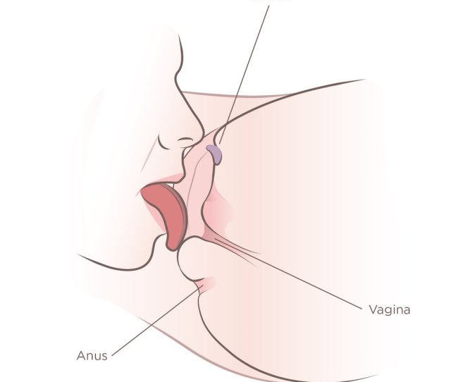 Tongue Licking The Bottom Of Vagina Showing How To Perform Cunnilingus