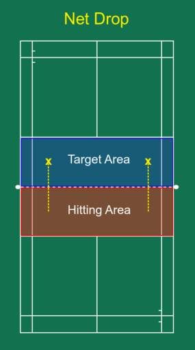 Net drop hitting and target area