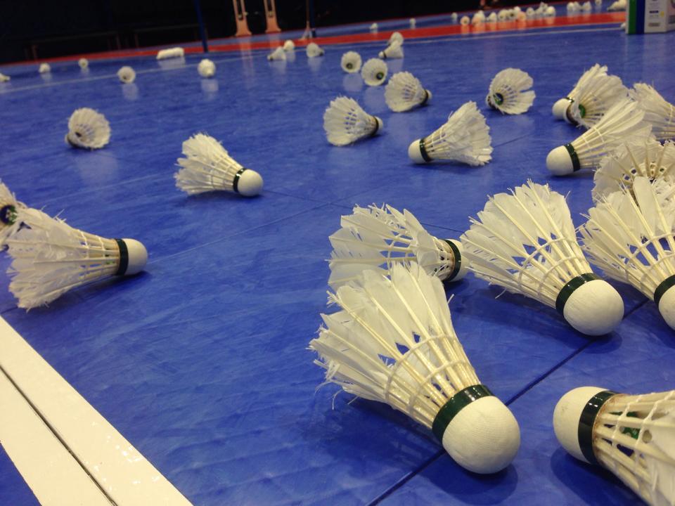 Billedresultat for badminton