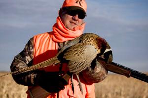 pheasanthuntdot