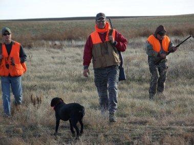 pheasant-hunting_2696835449_l