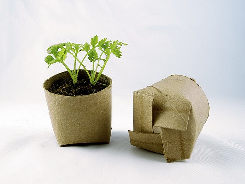 knutselen met wc rolletjes plantenbakjes