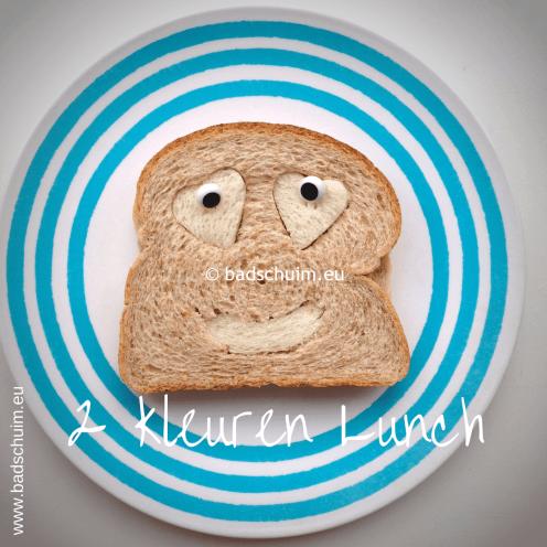 Broodtrommel tips wk 5 - 2 kleuren Lunch 02 I gemaakt door het creatief lifestyle blog Badschuim