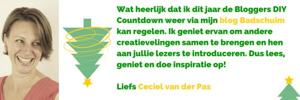 Ceciel van der Pas van Badschuim_organisator en deelnemer van de BDIYC