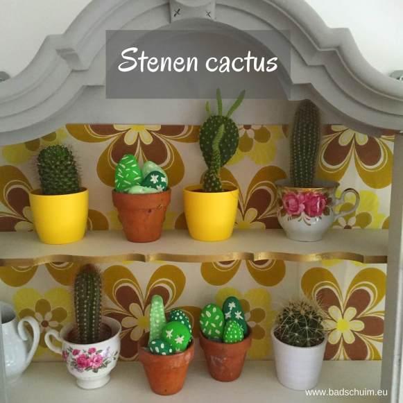 Helemaal hip: cactussen! Wil je een kindvriendelijke en onderhoudsvriendelijke versie?! Maak dan deze cactus van steen. Met dit DIY stappenplan zelf te maken (ook met je kids)!