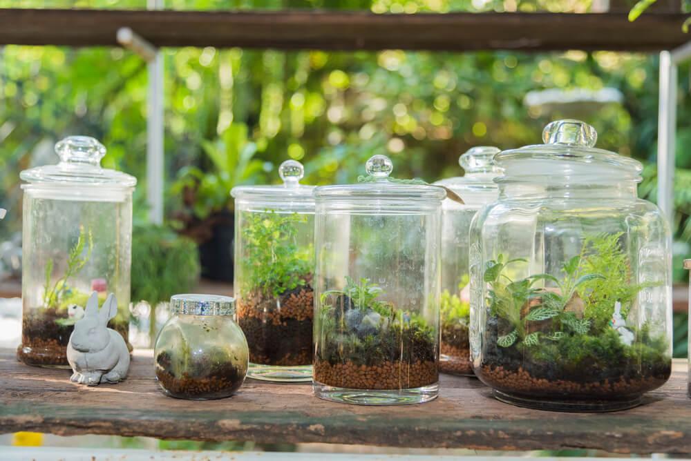 DIY: planten terrarium