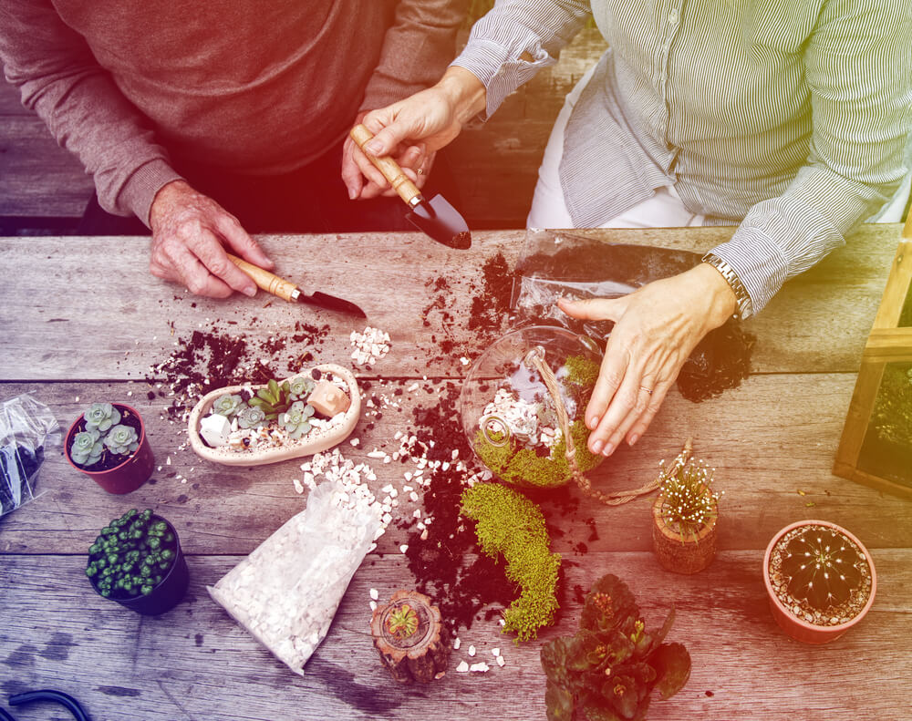 Planten terrarium maken