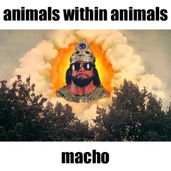 animals within animals - macho EP