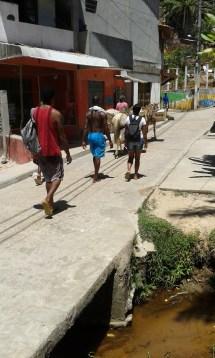 transport by donkey