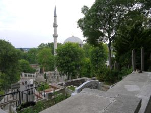 cats who don't care about the view on Eyüp Sultan Mosque