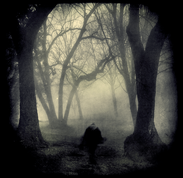 Whose_Woods_Are_These_II_by_intao