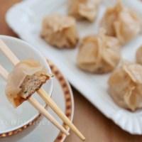 Dumplings mit Hähnchen Ingwer Füllung