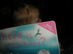 So where is Little Bear?
