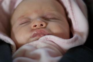 Close up, sleeping