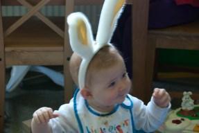 The Rabbit!