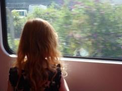 Train reflections