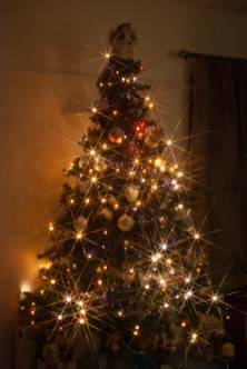 Star-filtered tree
