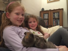 The girls and the guinea pigs
