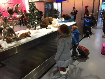 The luggage carousel