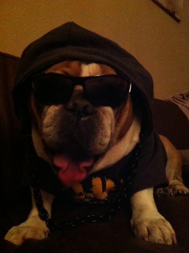 James Gangster 7